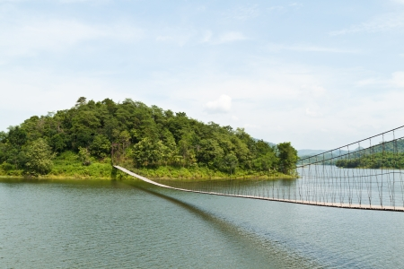 Hanging bridge in the forest photo