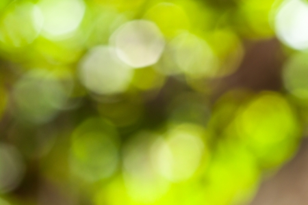 green bokeh abstract