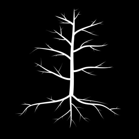 toter baum: Bäume mit toten Ästen und Wurzeln