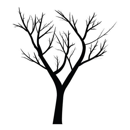 죽은 나뭇 가지와 나무