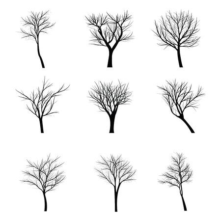 Les arbres avec branche morte Vecteurs