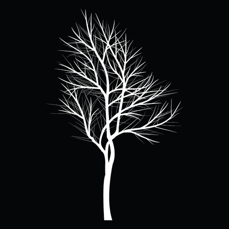 bare tree: Trees with dead branch
