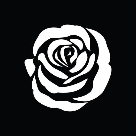 white roses: Black silhouette of rose Illustration