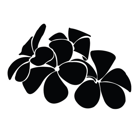 frangipani silhouettes for design vector Иллюстрация