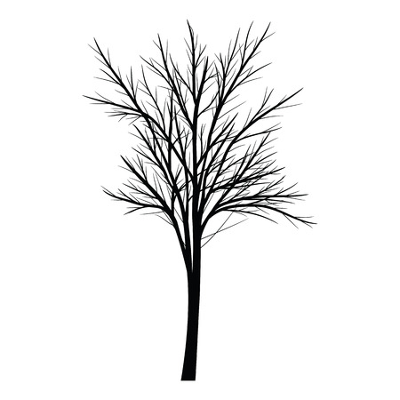 alone in the dark: Trees with dead branches
