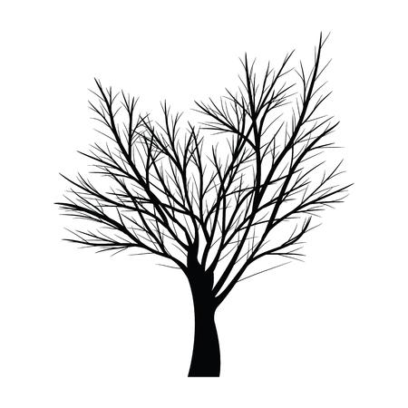 Schwarz Silhouetten Kahler Baum Mit Wurzeln Isoliert Auf Weißem ...