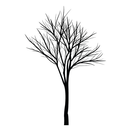 bough: Trees with dead branches