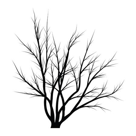 Bäume mit toten Ästen Standard-Bild - 83567517
