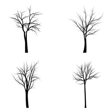 枯れ枝の木