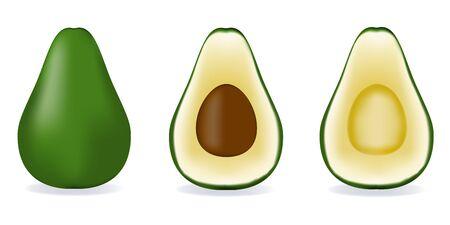 Avocado isolated on white background as package design composition. Ilustração