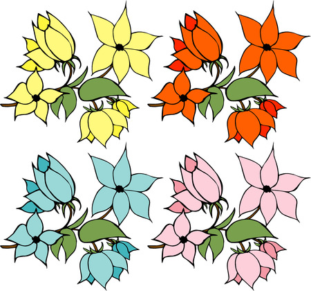 four flowers on white background