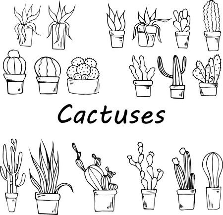 Cactuses in pots Ilustrace