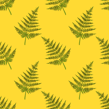 Fern seamless pattern. Bright cartoon illustration for children's greeting card design, menu, fabric and wallpaper. Vectores