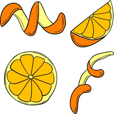 Vector set of citrus in cartoon style