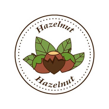 Vector hazelnut in cartoon style. illustration for design and web isolated on white background.