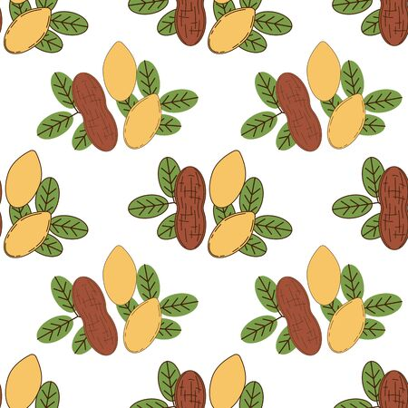 Seamless pattern of peanut in cartoon style isolated on white background