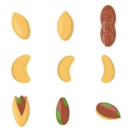 Set of nuts in flat style. peanut, pistachio, cashew  icons for design and web isolated on white background.