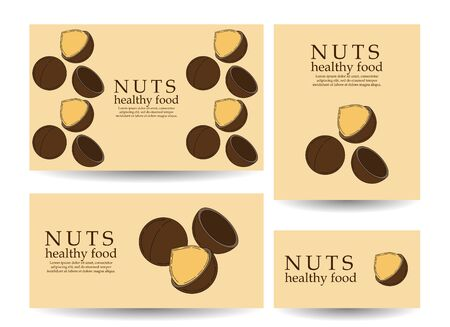 Set of vector banners and cards with macadamia nuts. illustration for your design