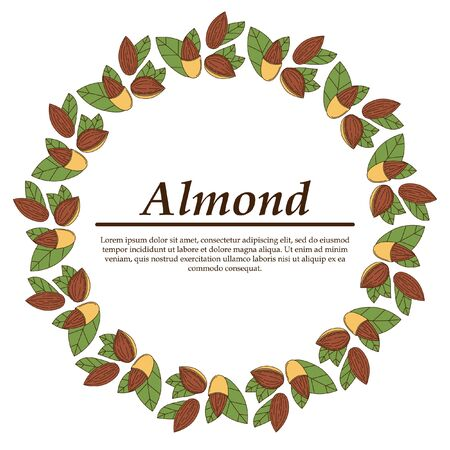 Vector almond in cartoon style. illustration for design and web isolated on white background.