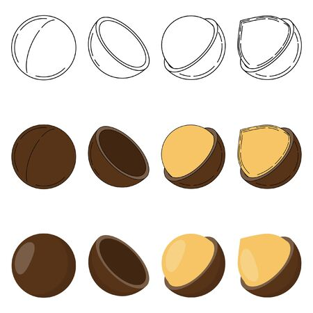 Set of macadamia nuts in three styles - outline, flat, cartoon. nut icons for design and web isolated on white background.