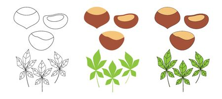 Set of chestnuts in three styles - outline, flat, cartoon. nut icons for design and web isolated on white background.