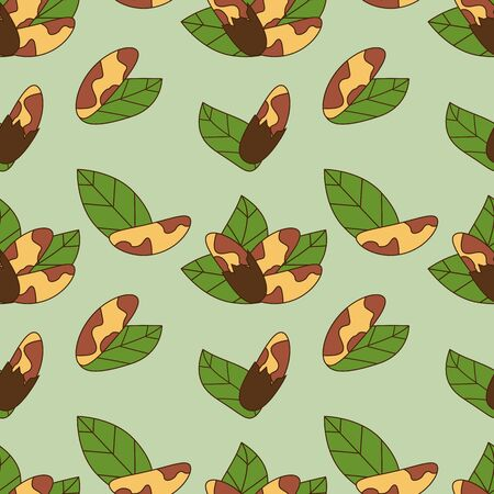 Seamless pattern of brazil nut in cartoon style isolated on green background