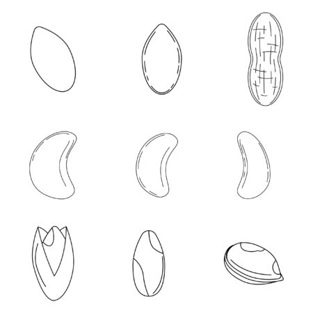 Set of nuts in outline style. peanut, pistachio, cashew icons for design and web isolated on white background.