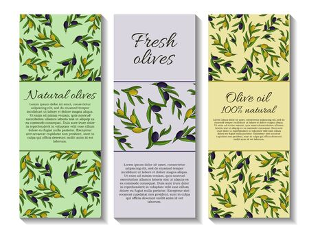 Set of vector banner with olive branches and space for text. Çizim