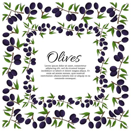 Vector card with olive branches and space for text. Çizim