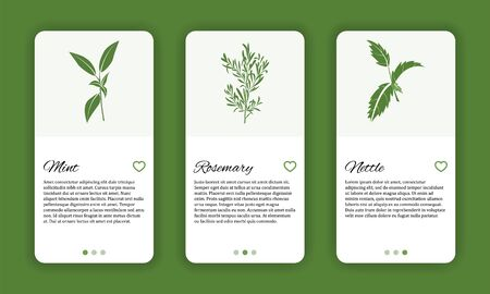 Herb cosmetic shop mobile application template. Modern illustration for design and web.