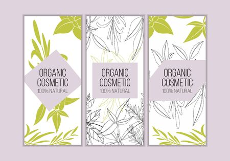 Vector herbal cosmetics card templates. Modern illustration for design and web. Çizim