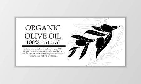 Vector olive oil banner template. Modern illustration for design and web.