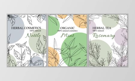 Herbal cosmetics vector card template. Modern illustration for design and web. Stok Fotoğraf - 137884171