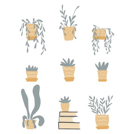 Set of cute house plants in pots. Vector flat illustration of hand drawn home flowers for your design and web.