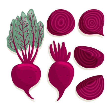 beetroot collection in cartoon style. Bright beet vegetables isolated on white background. Healthy organic beets with leaves and beetroot slices for autumn farm market design. Çizim