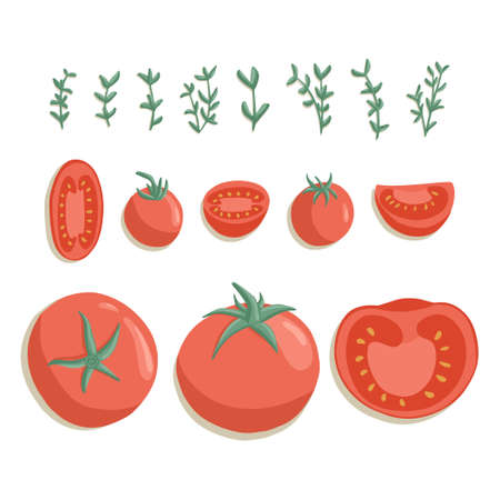 tomatoes collection in cartoon style. Bright cherry tomato vegetables isolated on white background. Healthy organic tomato slices and rosemary for autumn farm market design. Çizim