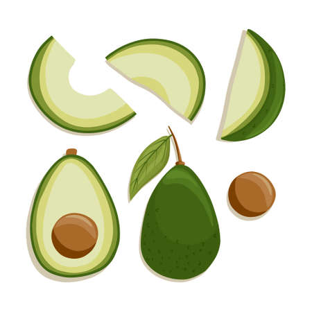 avocado collection in cartoon style. Bright avocado vegetables isolated on white background. Healthy organic avocados with leaves and slices for autumn farm market design.