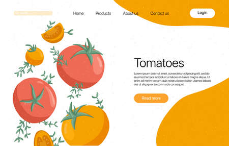 tomatoes landing page template with text space. Cherry tomatoes and rosemary cartoon illustration. Healthy organic tomato slices and rosemary web page design.