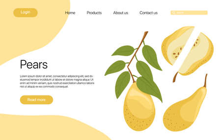 pears landing page template with text space. Pear slices with leaves cartoon illustration. Healthy organic pear fruits web page design.