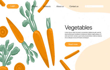 carrots landing page template with text space. Carrot cartoon illustration. Healthy organic carrot slices and leaves web page design.