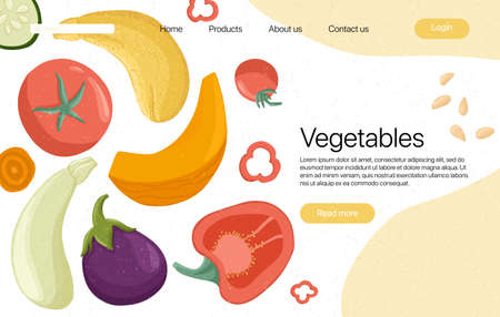 vegetables landing page template with text space. Tomatoes, peppers, pumpkin, zucchini, eggplant cartoon illustration. Healthy organic vegetable slices and leaves web page design. Çizim