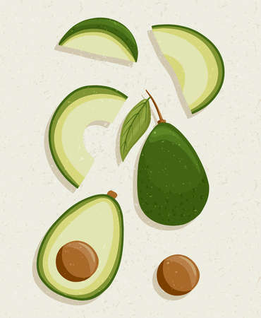 avocado cartoon illustration with textures. Healthy organic avocados with leaves and slices for autumn farm market design. Çizim