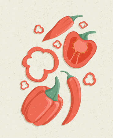 Vector bell peppers cartoon illustration with textures. Healthy organic natural chili and bell pepper slices.