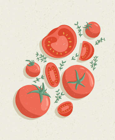 Vector tomatoes cartoon illustration with textures. Healthy organic tomato slices and rosemary.