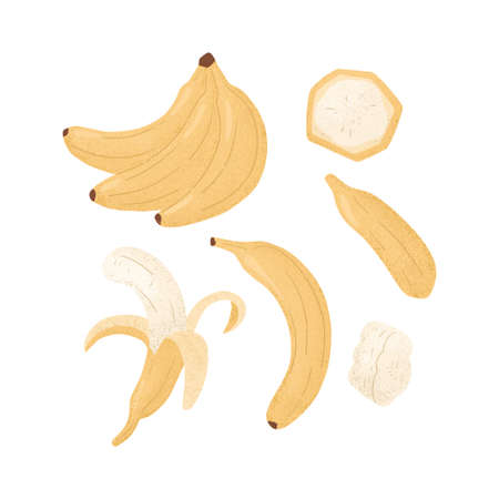 Ripe Banana, whole and peeled banana. Sweet banana fruits vector hand drawn illustration on white background. Set of bright tasty tropical fruits. Juice or jam logo element.
