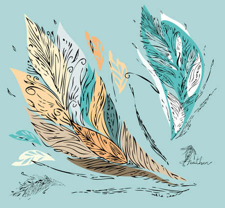 Vector tracery of colorful feathers -  leaves Hand-drawn in ink Vector