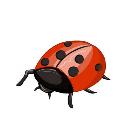 Cute cartoon ladybug . red insect with blackspots
