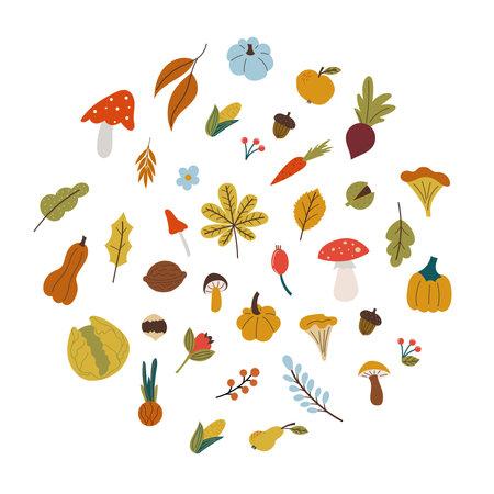 autumn leaves , mushroom, vegetables in flat style Vettoriali