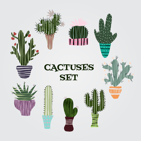 Flat colorful illustration of succulent plants and cactuses in pots. Vector botanical graphic set with cute florals.