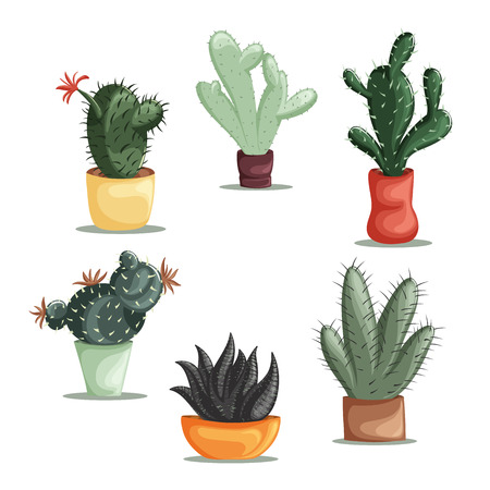 Colorful illustration of succulent plants and cactuses in pots. Vector botanical graphic set with cute florals. Vettoriali